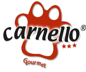 logo_carnello_transparent